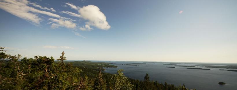 Mosaik aus Wald und Wasser auf der Finnischen Seenplatte, das Richtung Norden zunehmend durch Moorflächen unterbrochen wird