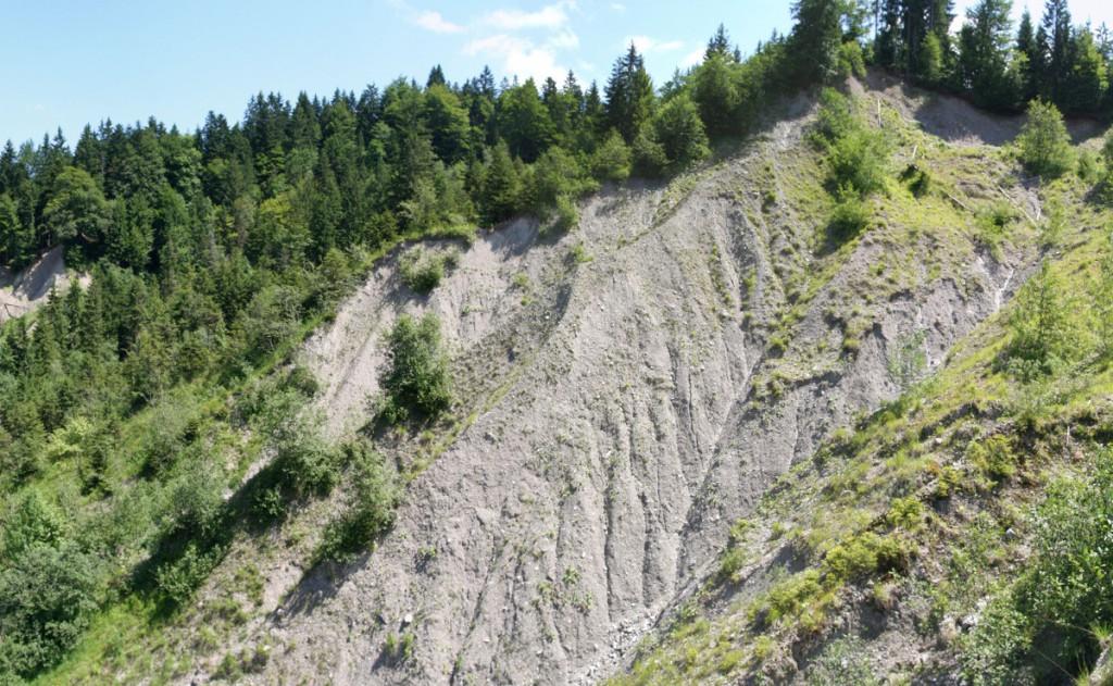 Abb. 5: Reiße im Lainbachtal bei Benediktbeuern. Besonders deutlich sind die stark ausgeprägten Runsen zu erkennen. (Quelle: eigene Aufnahme 2013)