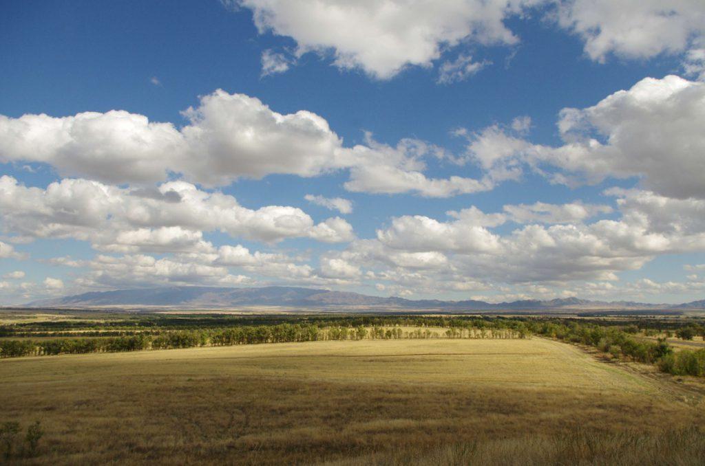 Neulanderschließung mit den vielen Baumreihen für den Windschutz. ©Katharina Schilling
